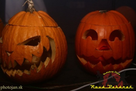 Halloween D 9